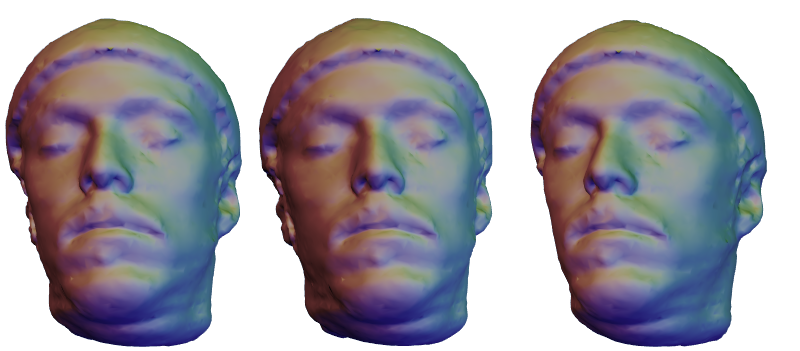 Input images for the displacement map estimation