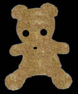 TeddyNoLightInput